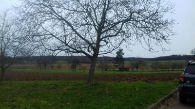Prodej Pozemek, Popovice