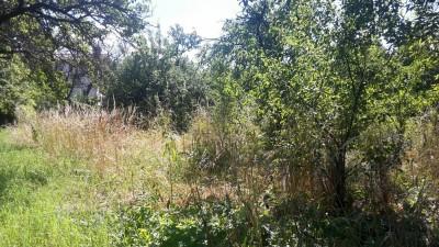 Prodej Pozemek, Těšnovice