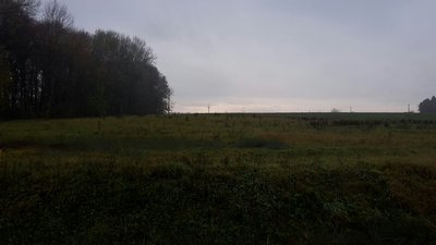 Prodej Pozemek, VĚŽKY
