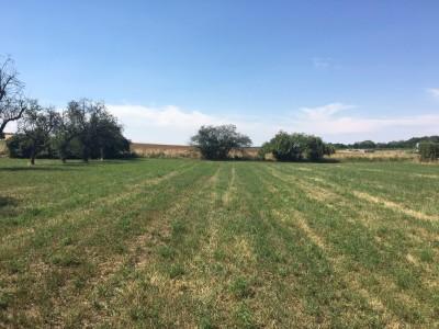 Prodej Pozemek, Postoupky