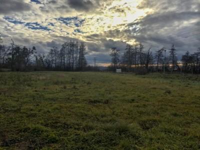 Prodej Pozemek, Bílany